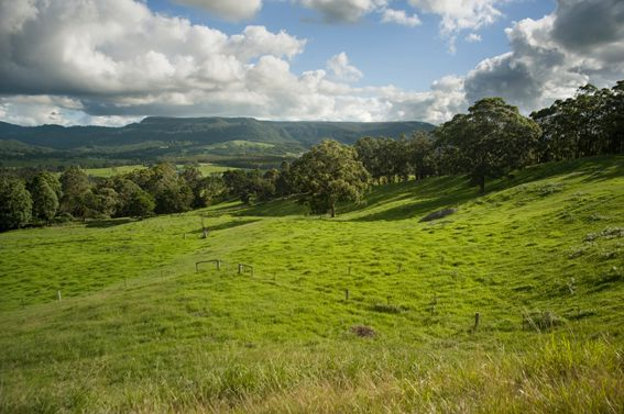 Kangaroo Valley Australia  City pictures : View in a Class of its Own