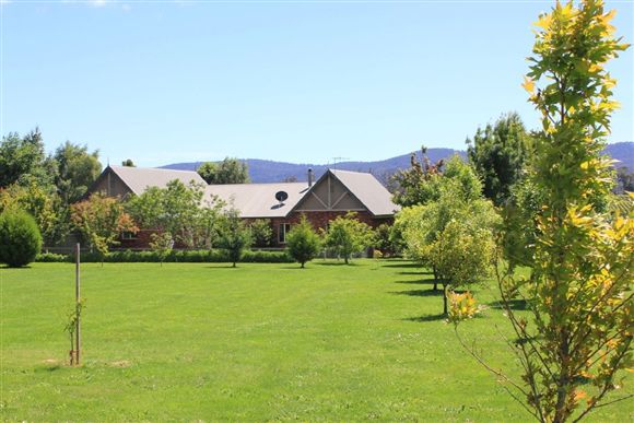 """""""Blue Gum Place"""" - 2 Homes on Approx. 9 Acres"""