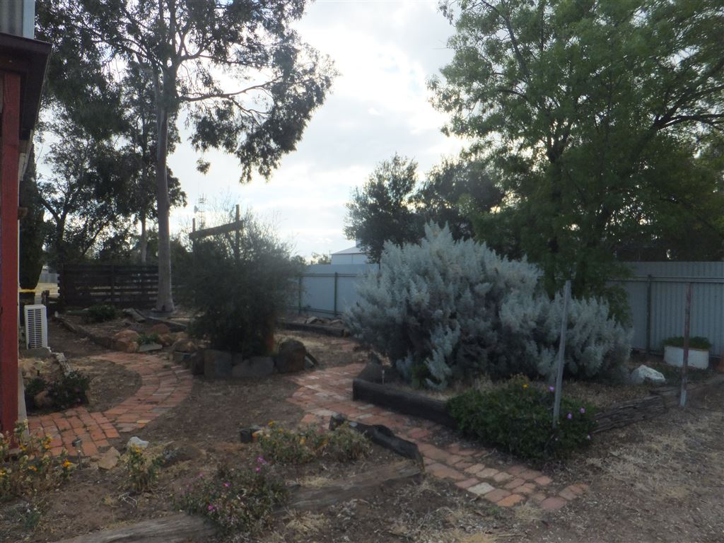 Easy care and drought tolerant side garden with recycled brick paved footpaths and garden edging