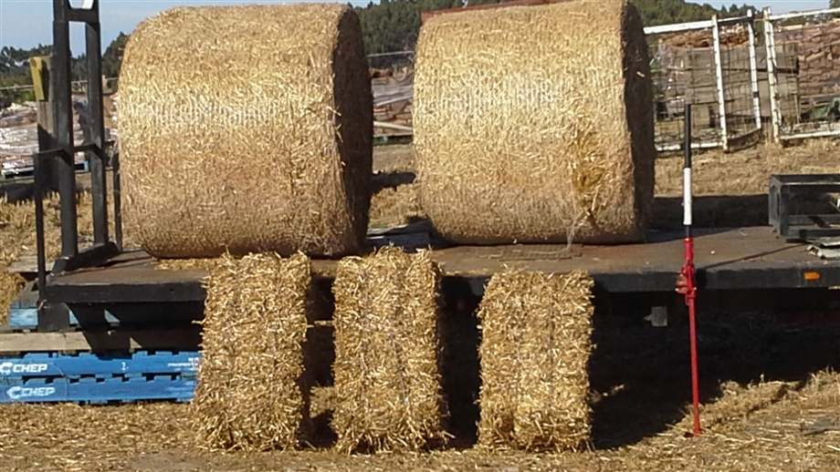 Wood, Pea Straw & Manure