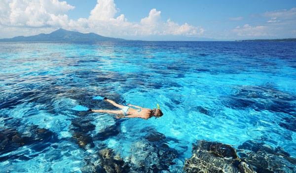 Luxury Property Selection Swimming Photo