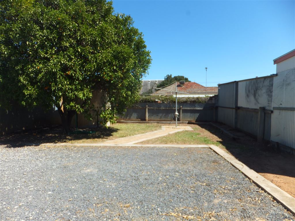 Clothesline with paved footpath, established orange tree on left of photo