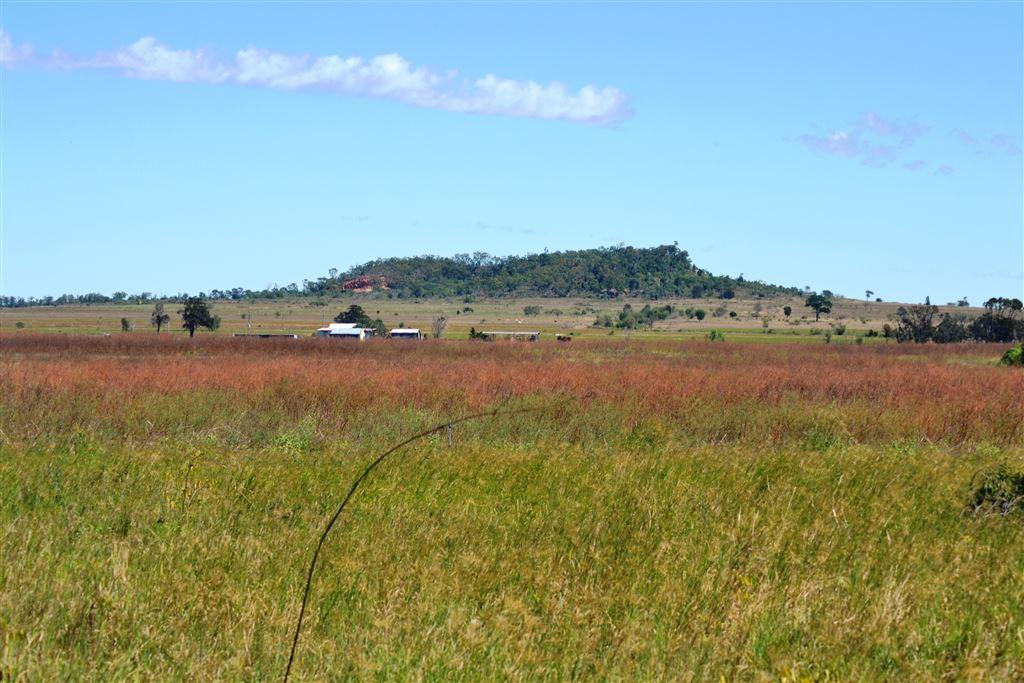 """""""Lil' house on the prairie"""" - 100 acres"""