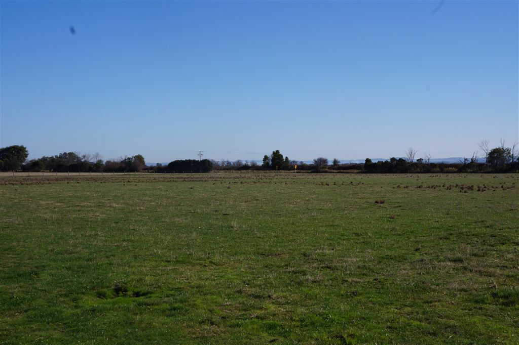 Fantastic Farm Land - 20.2HA(50acres approx) at Modella