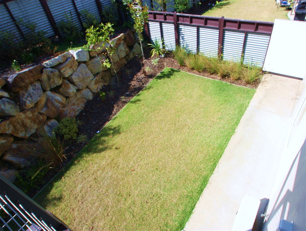 Harcourts Coomera - back yard