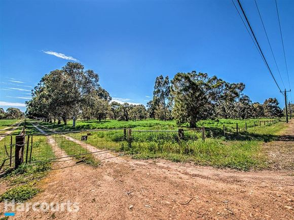 45acres with Gingin Brook frontage .. Sheep & Orchard!