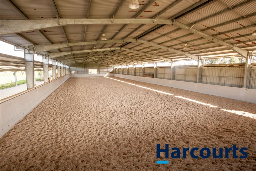 Equine Excellence in Yarragon