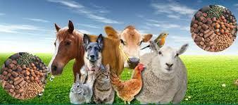Pets, Stock Feed, Gardening, Organic Fruit and Veg Retail
