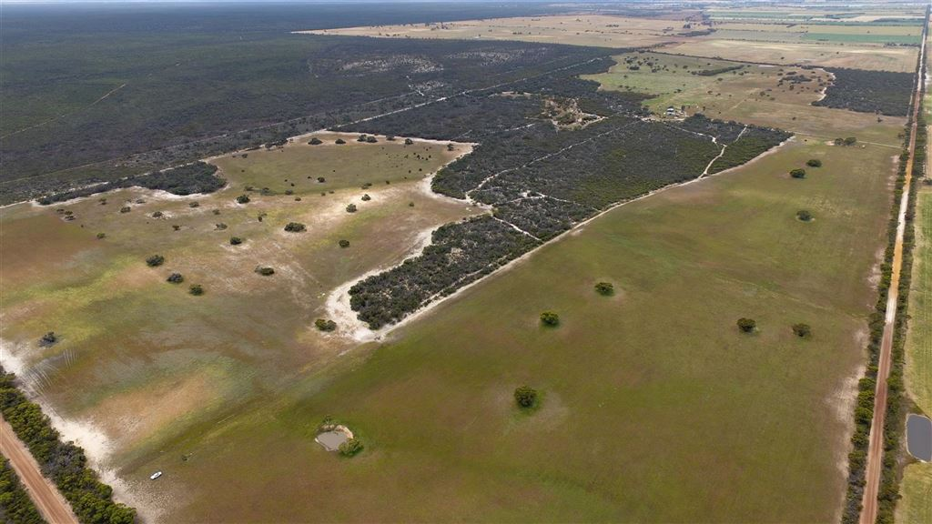 284 Acres / 115 Hectares approx.