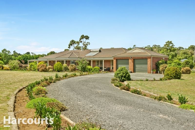 Quality Living in Prime Location On 5 Acres & Massive Shed