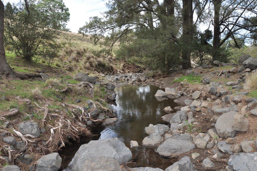 450 acre grazing/lifestyle property