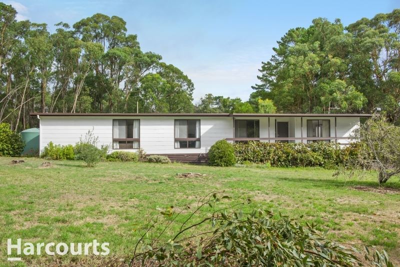 Home Amongst The Gum Trees - Just Under 2 Acres