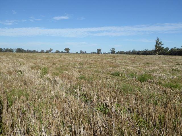 Good grazing / cropping block
