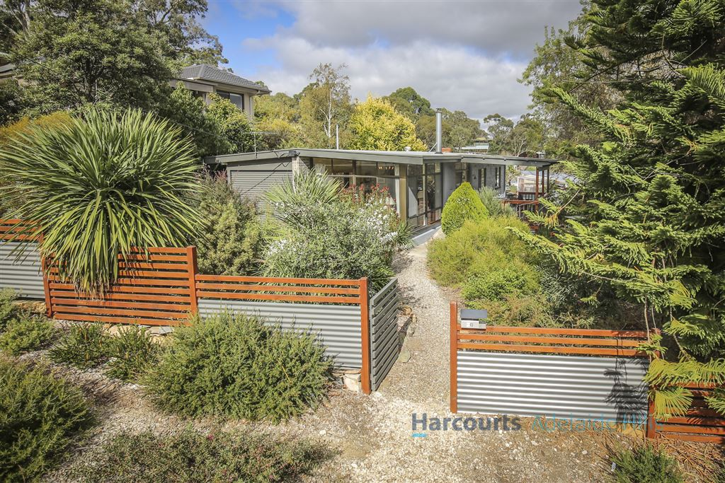 'Light-Filled Hillside Property'