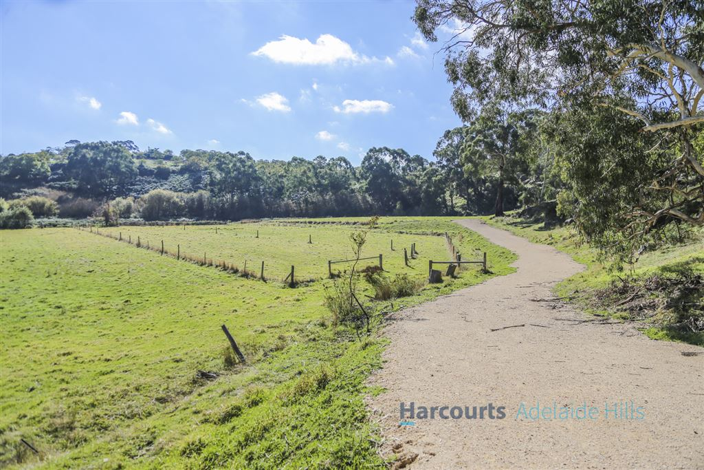 Endless opportunities upon 8.77 acres!