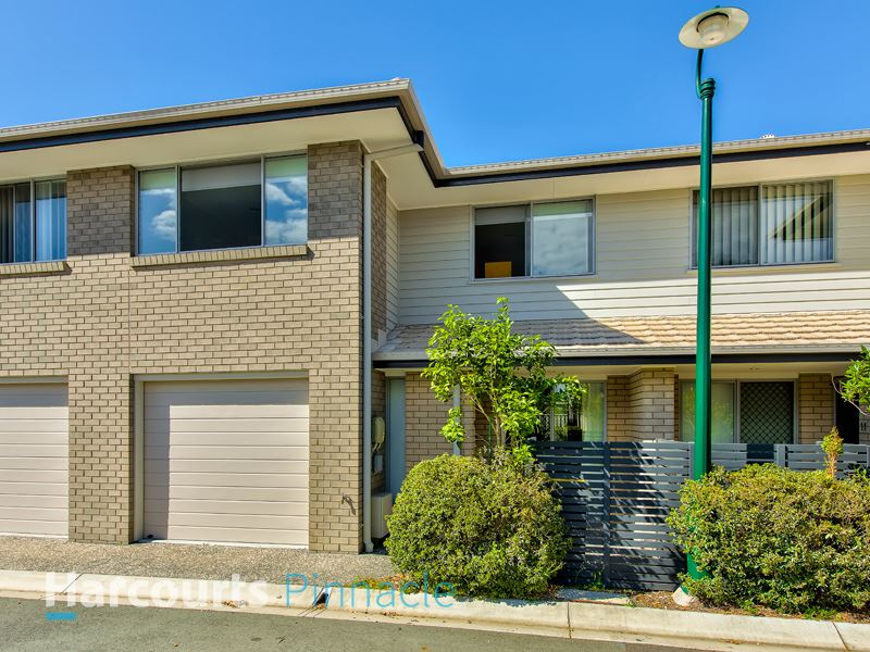 Exceptional Value in Fitzgibbon Chase