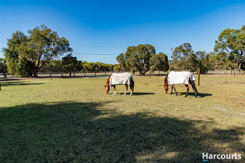 Acreage, Equine Facilities & Lifestyle!
