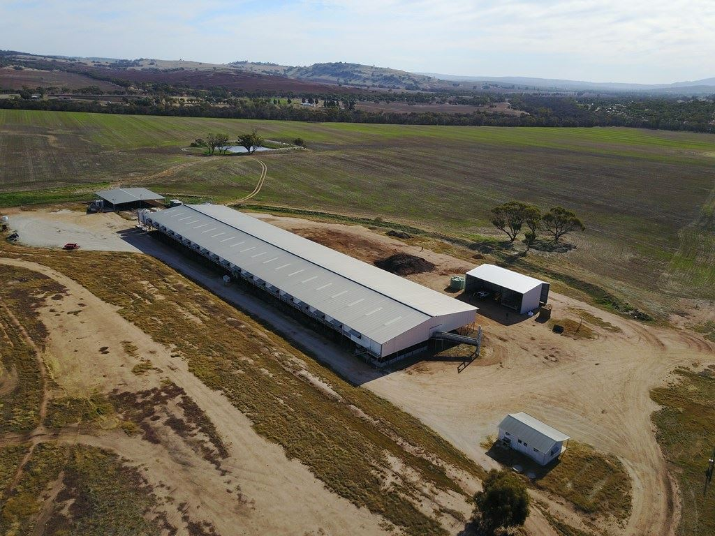 Boyles Feedlot Operation (158.4ha)