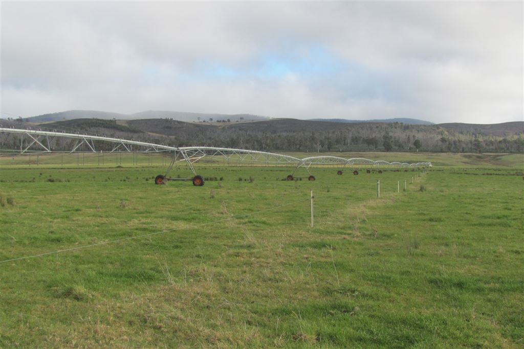 Large scale dairy in idyllic location!