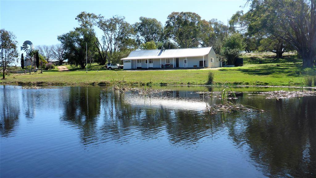 """Woodbine Estate"" farm open 08th October"