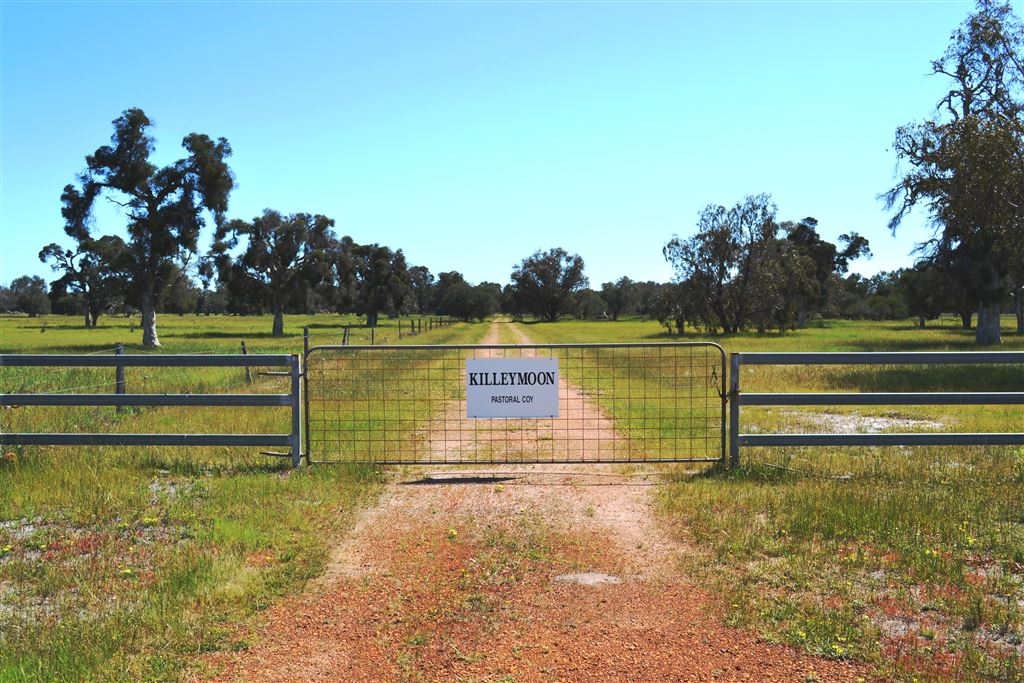 Rare Find- Large Rural Investment in Muchea