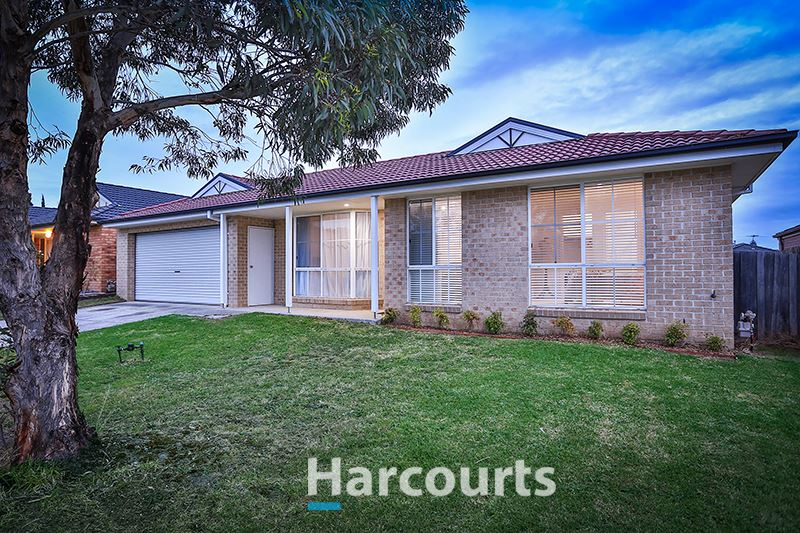 Immaculate Home on a Large 648m2 Block!