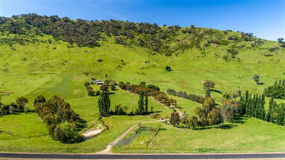 Upper Murray grazing country