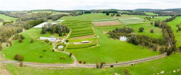 Established Cool Climate Apple Orchards