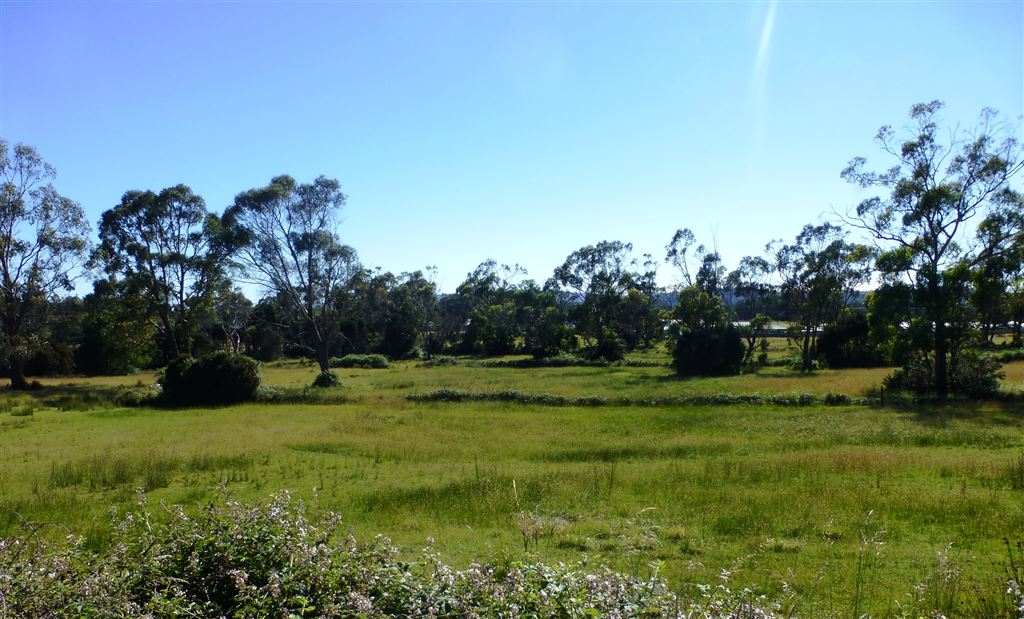 5.06HA of Sub-dividable Land in Town!