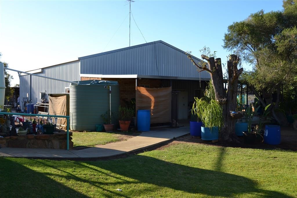 shed with granny flat