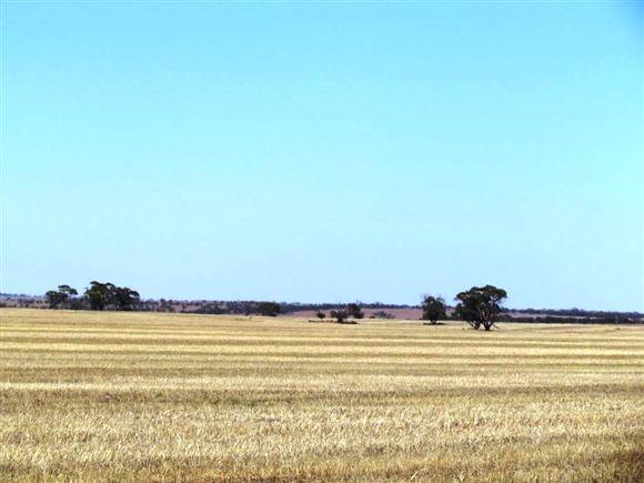 Somervale (3787 ha / 9357 ac)