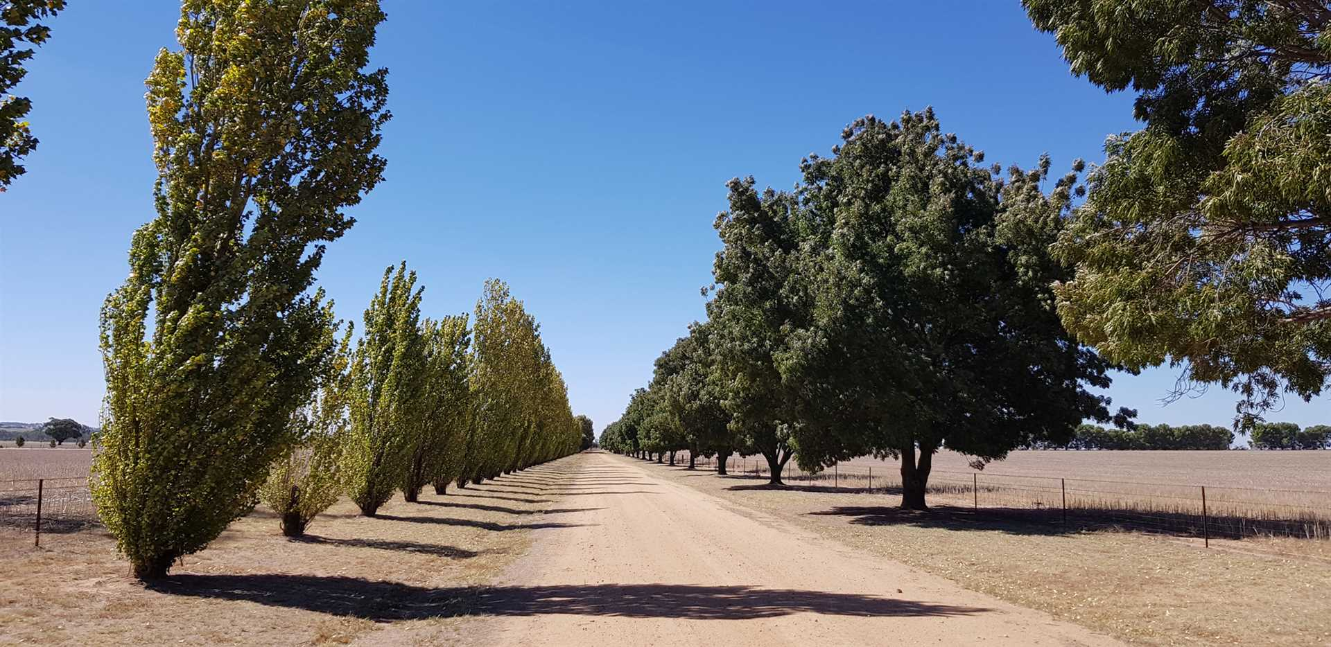 Penola  - peace, tranquility and privacy