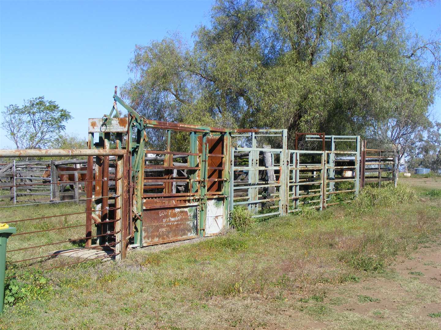 Iron cattle yards, vet crush and race, loading ramp on right of picture.