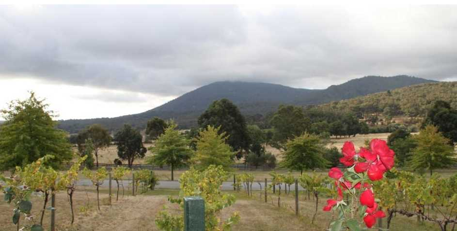 Business for Sale - Wooling Hill Garden Estate Business Only, New Gisborne