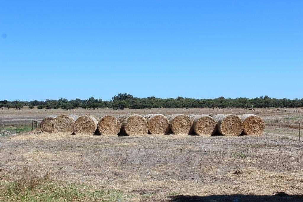 Ready-Made Farm  Elgin/Capel (77.79ha/192.14ac)