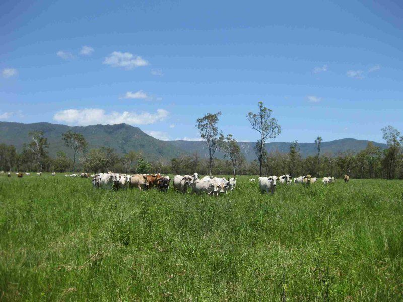 View of part of property (livestock excluded), photo 5 (photo not recent)