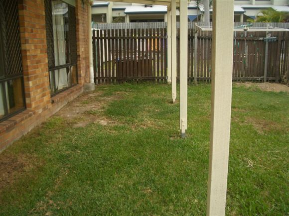 Low set 2 bedroom Unit - Electricity Included in Rent!