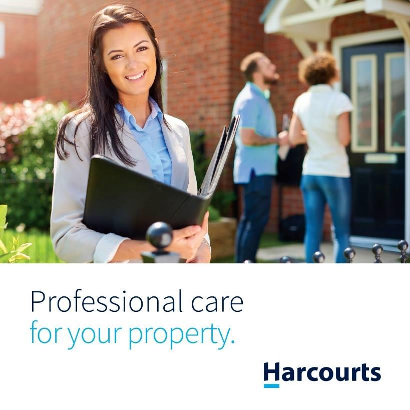 Professional care for your property.
