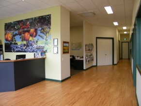 Wandin Landmark Harcourts Office