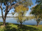 nagambie lake