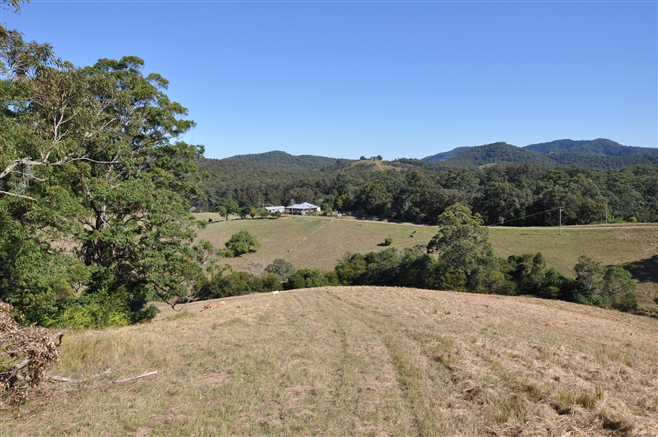 577 Pappinbarra Road, Beechwood