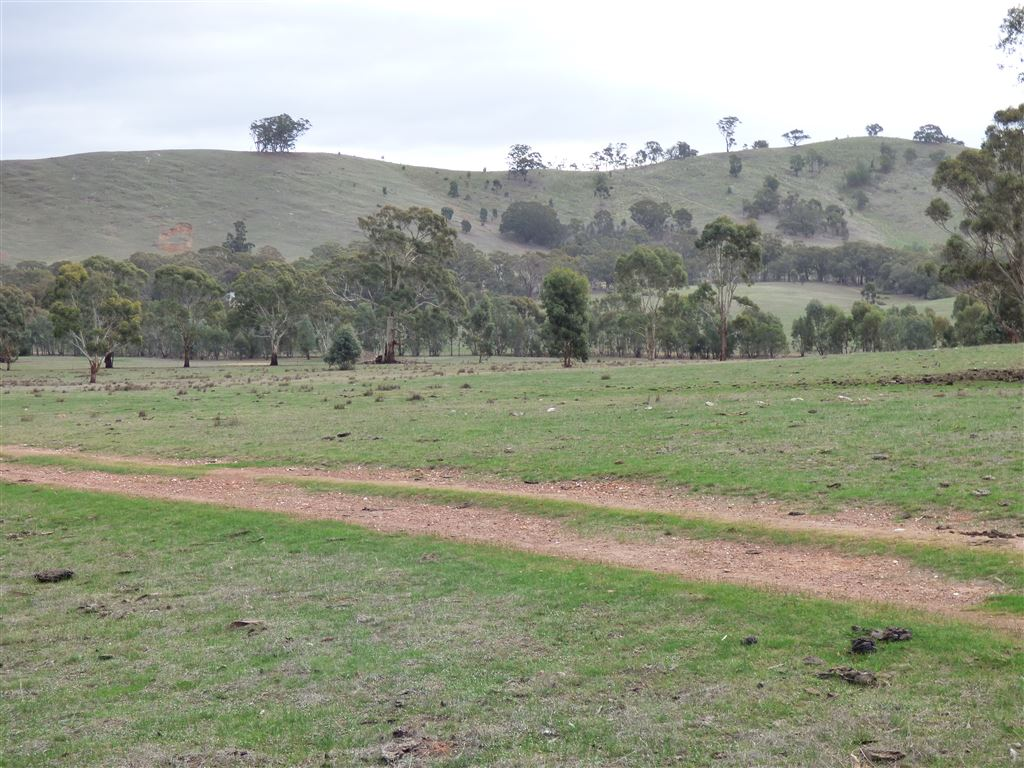 Rollings hill at the rear of property