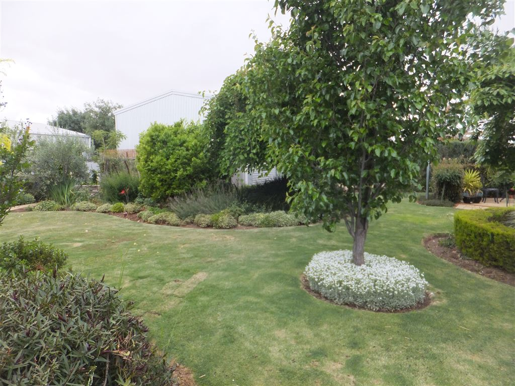 Magnificent garden with established plants, perennials & shrubs and a full watering system