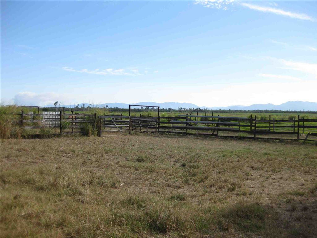 View of part of cattle yards, photo 1