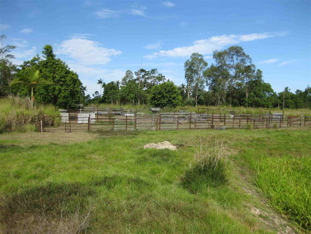 View of part of cattle yards, photo 4