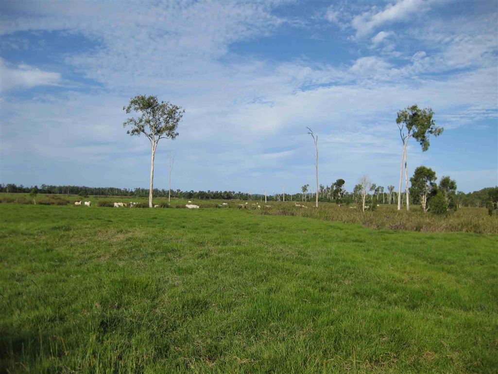 View of part of property, photo 6 (livestock excluded)