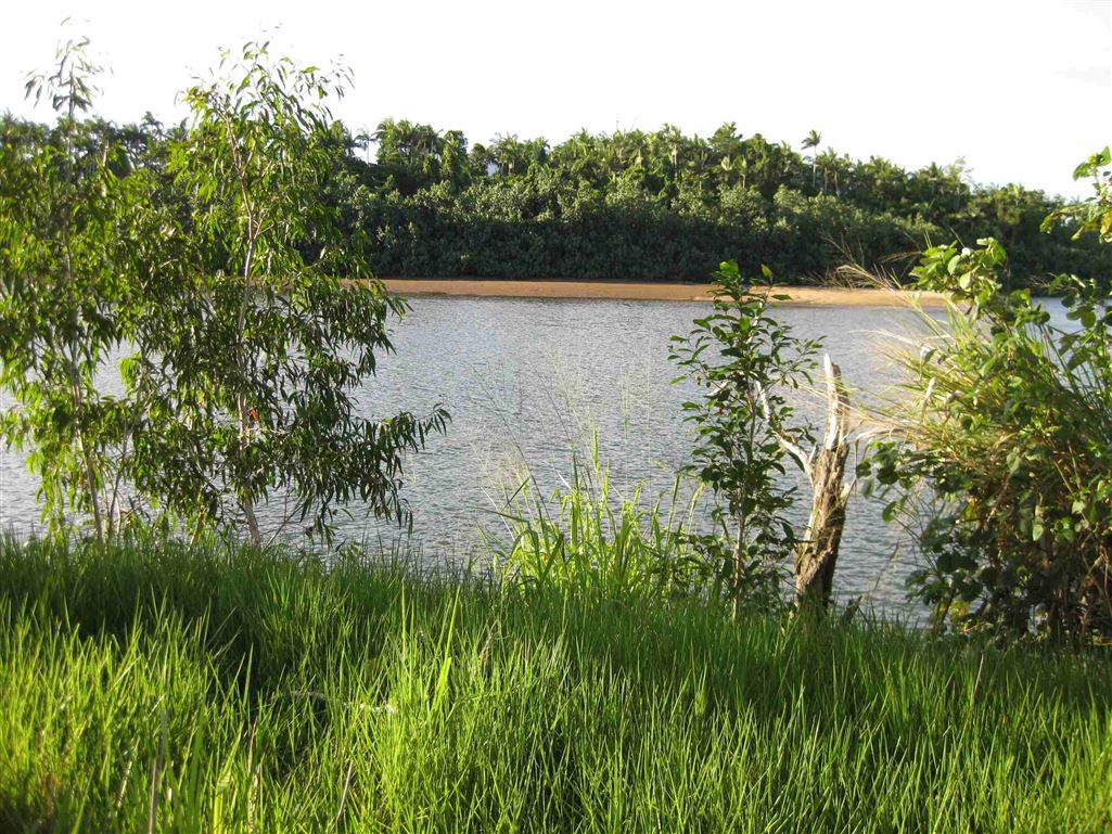 View of part of Tully River from property or esplanade, photo 2
