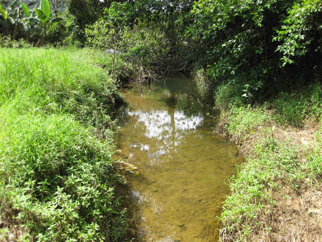 Lot 2, view of part of meandering internal creek