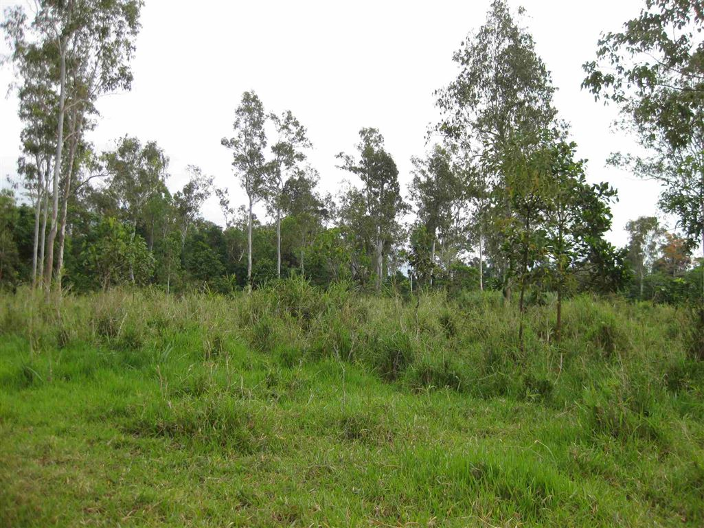 View of part of property, photo 5