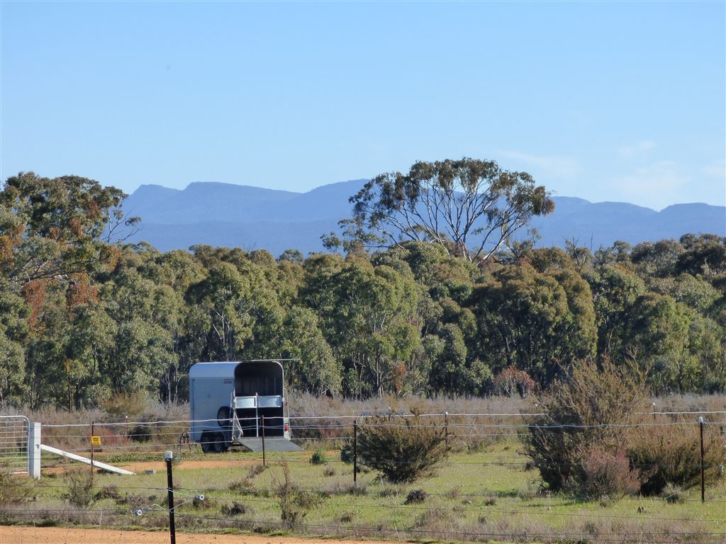 Views to Grampians From Potential Home Site